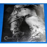 Gore - Consumed By Slow Decay - Lp - 2012 - Lacrado